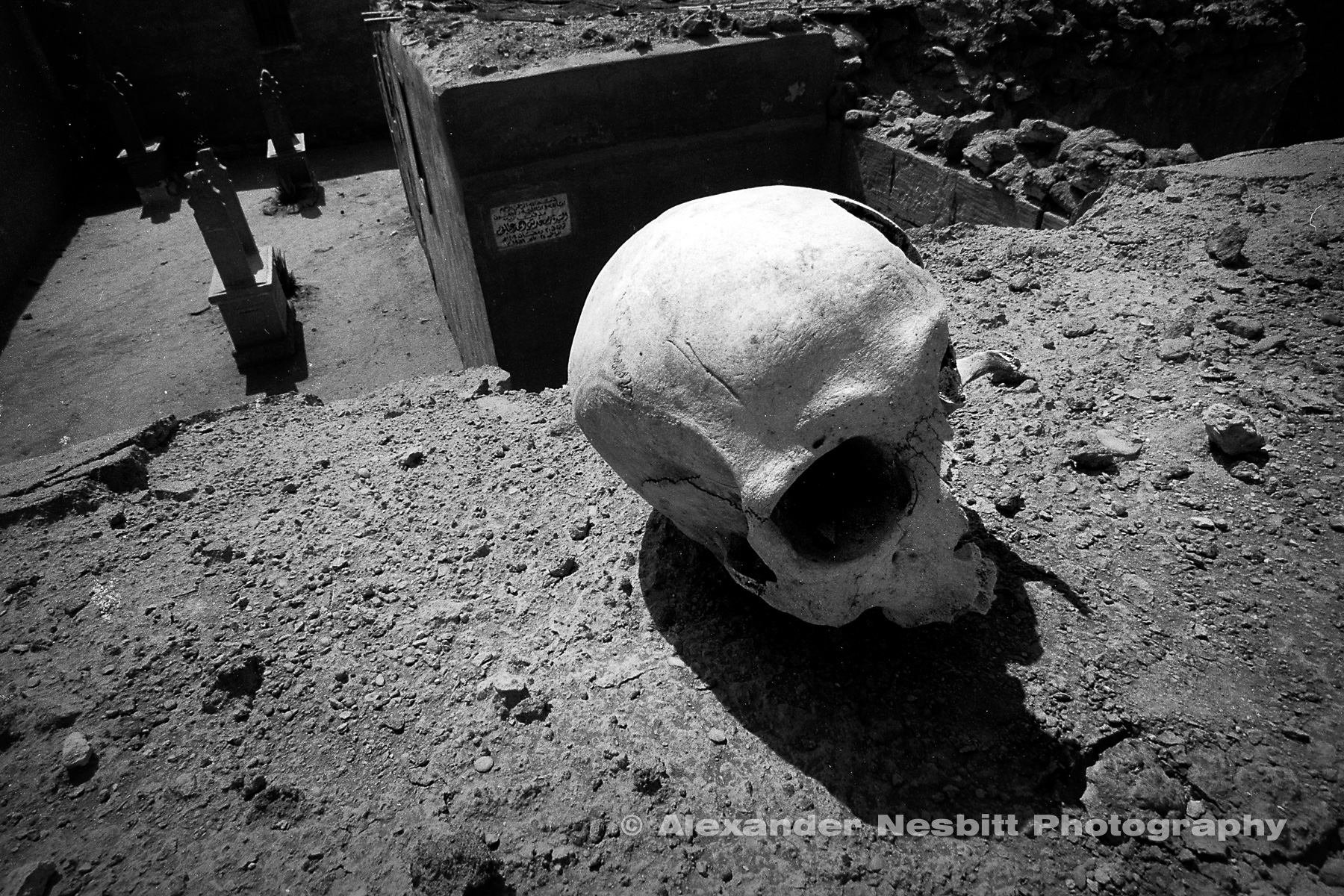 Nesbitt-GOOD-Images-off-desk-top-skull-98xxxx