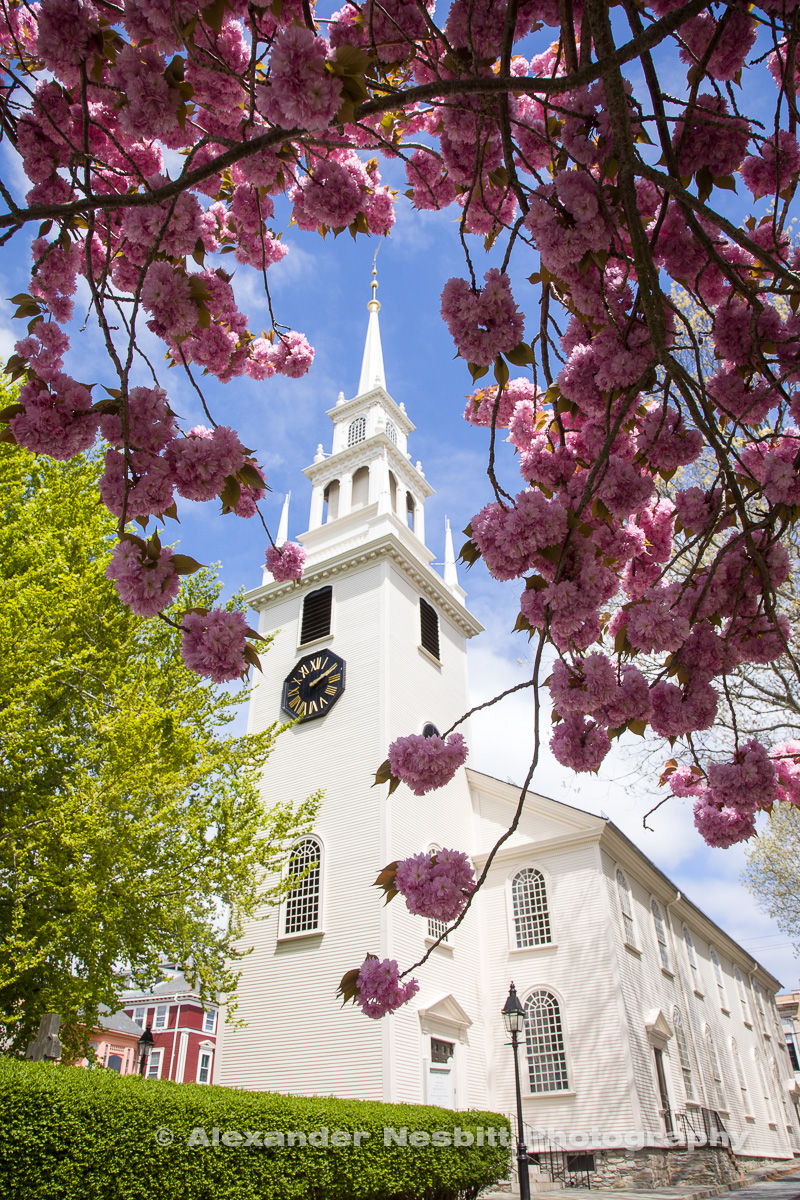 Spring in Newport RI - Colonial Trinity Church with Cherry Blossoms