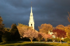 USA - Newport, RI - Spring bloom on  trees of Queen anne square with trinity church in back ground in downtown just after a storm has passed.