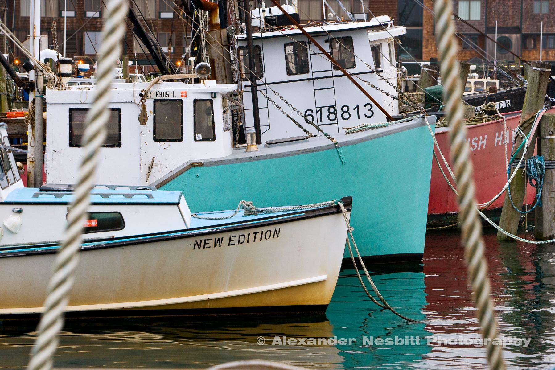 Nesbitt-TIF-Nesbitt-Newport-2009-VX3U8263