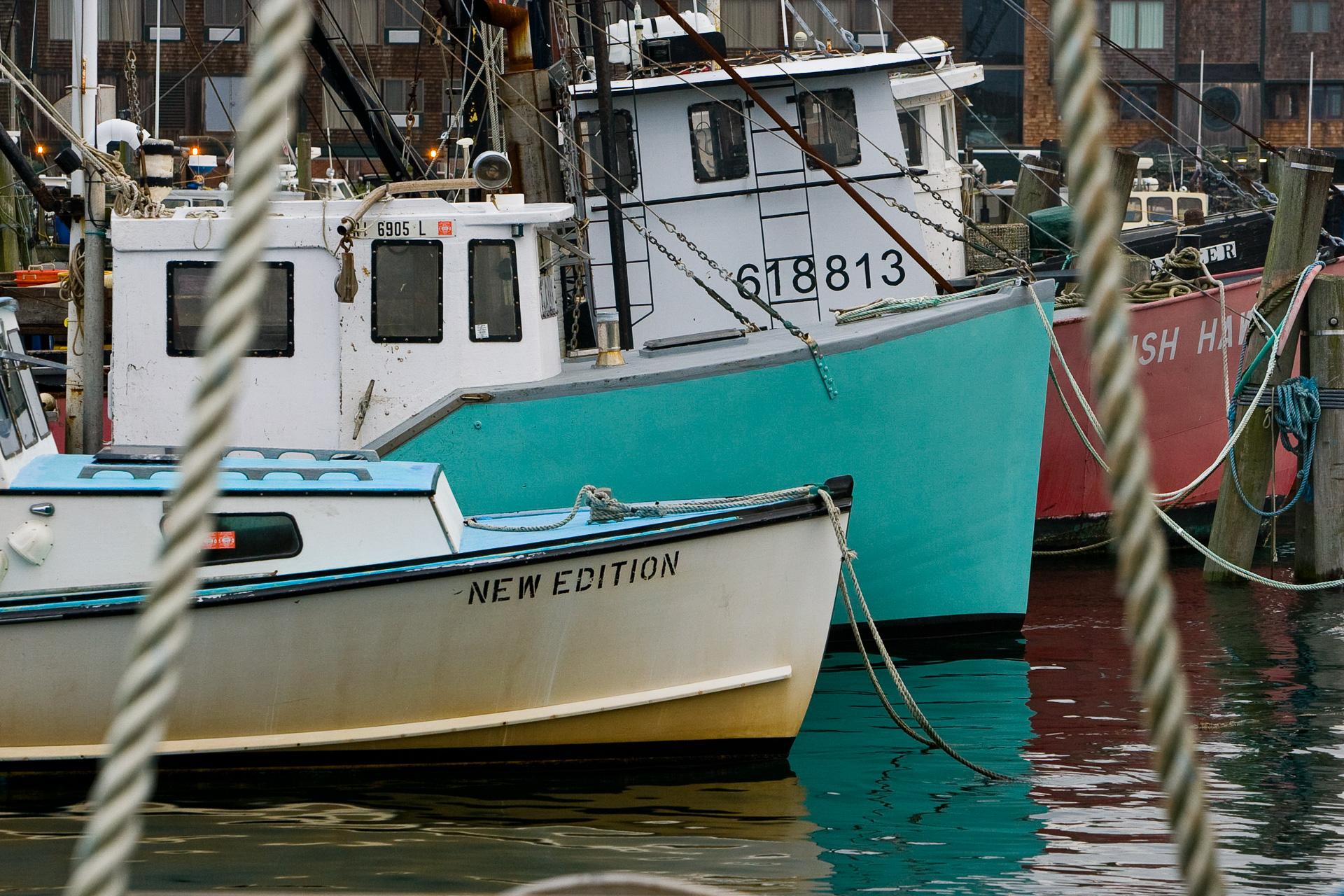 Nesbitt-Newport 2009-VX3U8263