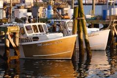 Nesbitt-Newport_2016-stock-5E6A9639