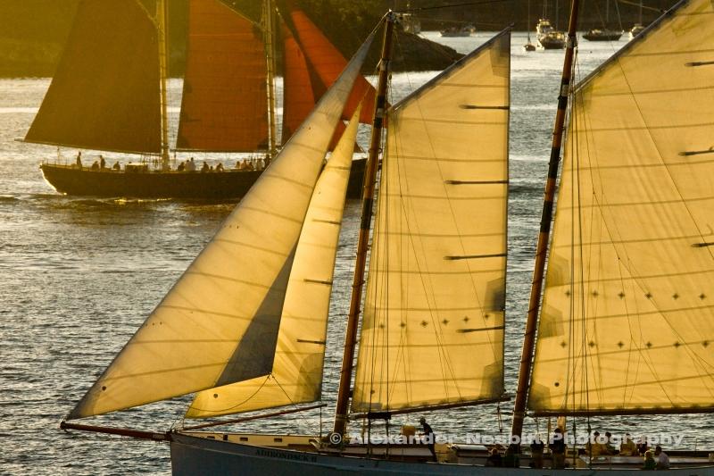 Nesbitt-portfolio-high-res-Nesbitt-Newport-2008-RAW-VX3U0168