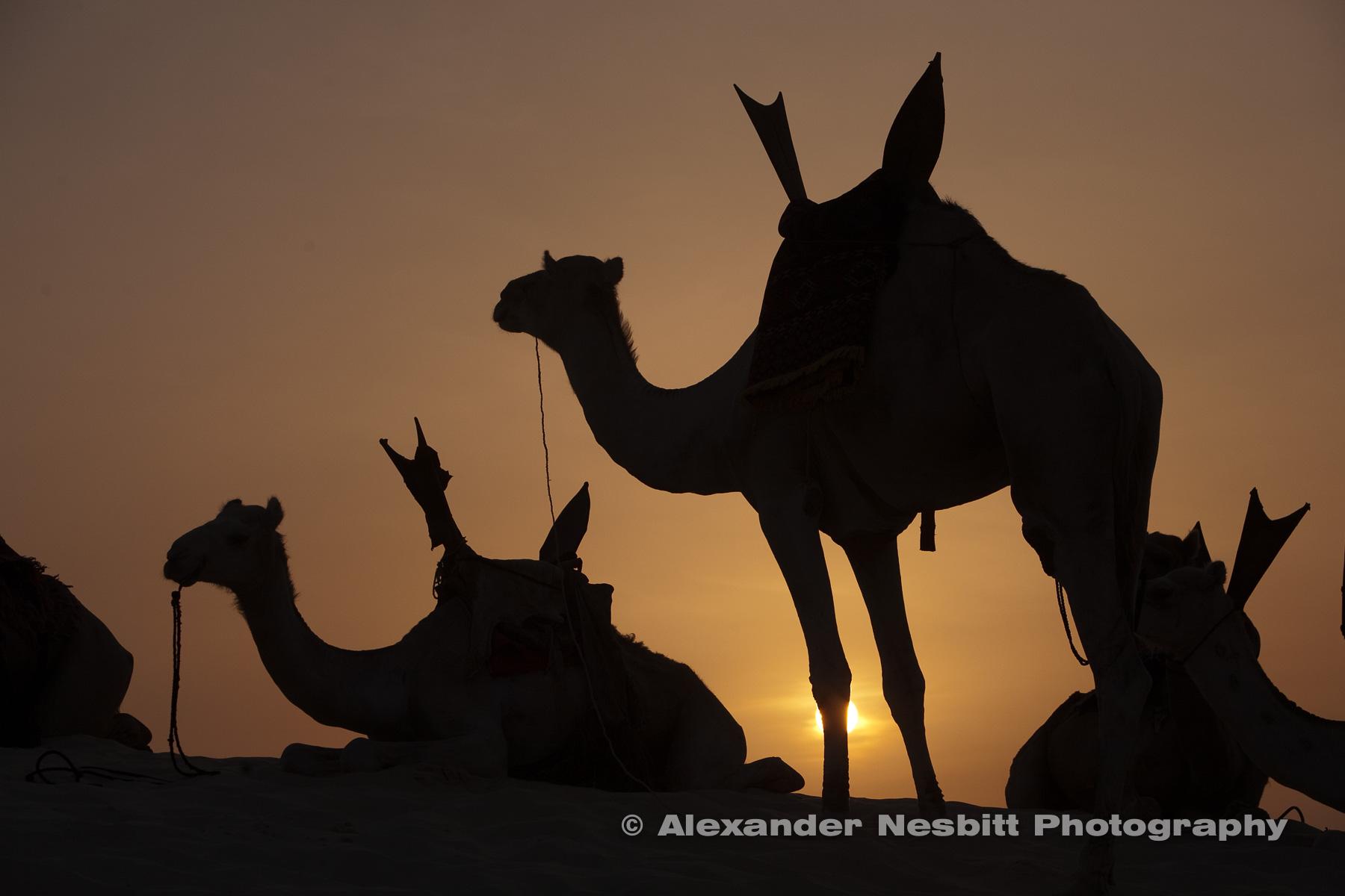 Mali, West Africa.