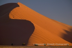 Namibia, Namib desert - Dune 45 at the 45 kilometer mark from the Sossusvlei gate deep in the Namib desert