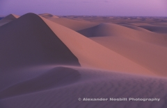 Egyptian Western Desert, Egypt.  high winds blow sand across huge transverse dunes which run for hundreds of miles between Farafra and Dakhla Oasis.  The deep desert is also known as the Great Sand Sea in areas such as this.