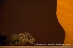 NAMIBIA-059U3404