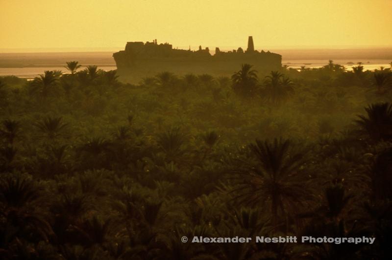 Nesbitt-Sand-Sea-Nesbitt-Egypt_SandSea_4-20