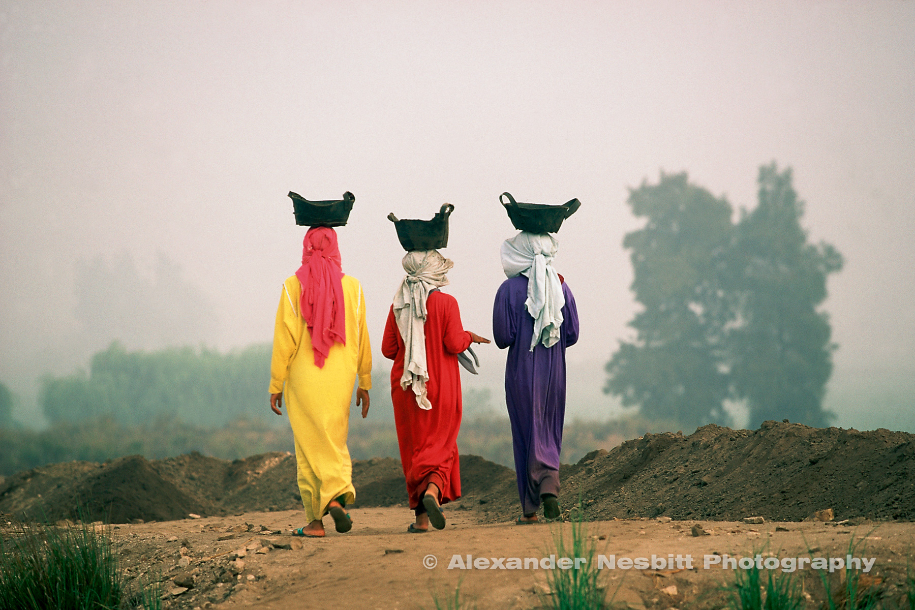 Egypt, Mendes 2000 - Three local girls in colorful dresses walk through the Mendes dig site while balancing baskets on their heads. The baskets are filled with earth from excavation at the dig site near Mansura in the Nile Delta. The bright yellow, red, and purple dresses are the girls work clothes.