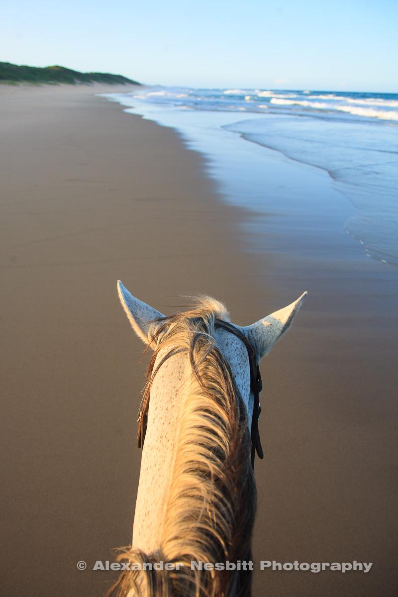 Beach ride, Mozambique
