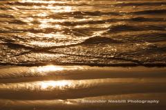 Sachuest Beach Golden Ripples