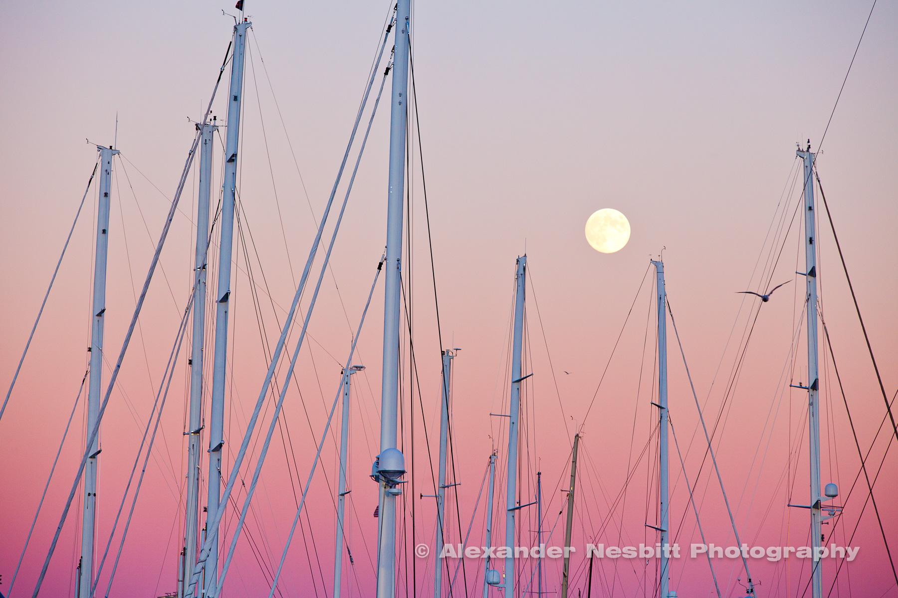 Lunar Masts